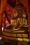 The three sitting gold buddha in chapel Stock Image