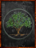 Tree Sketch color leaves on blackboard Royalty Free Stock Image