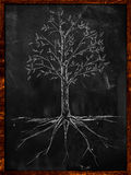 Tree Sketch leaves and root on blackboard. Drawing Stock Photo