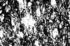 Tree skin texture black and white  illustration Royalty Free Stock Images