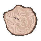 Tree slices vector isolated. Wood slice texture wooden circle cut tree material. Tree slices wood trunk section natural timber. Slice of tree trunk. Aging round Royalty Free Stock Photography