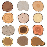 Tree slices vector set Stock Images