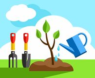 Tree, small, gardening, coloured illustrations. In the earth a small tree planted it and watered from a watering can. Color flat illustration. Landscaping Stock Photography