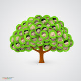 Tree of smiling happy family faces. Stock Photos