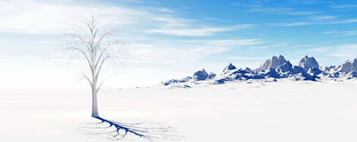 Lone tree snow mountains Royalty Free Stock Photography