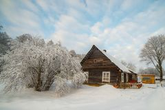 Winter season landscape, Christmas time. Tree with snow near wooden house, lots of snow in frosty winter royalty free stock photography