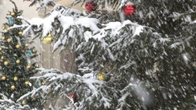 Tree in snow storm. Video of tree in snow storm stock video footage