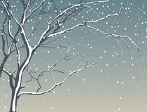 Tree in snowfall Royalty Free Stock Photos