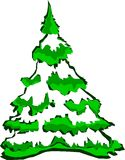 Tree. Snowy spruce tree reminiscent of non-violent upcoming Christmas stock images