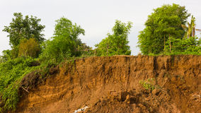 Tree with soil slides. Royalty Free Stock Photos