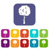 Tree with spherical crown icons set Royalty Free Stock Photos