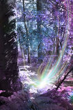 Tree Spirit Birth. Scene of deep woodland with thick tree trunk on left, with ethereal coloring of blue and purpls, and a supernatural light being at the base of Stock Image
