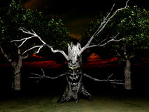 Free Tree Spook 2 Royalty Free Stock Photography - 3424697