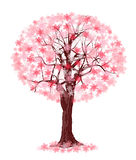 Tree with spring color Stock Photos
