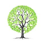 The tree, spring, drawing Royalty Free Stock Photo