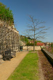 Tree in spring garden. Tree and bench (Spring in Prague Castle Garden Stock Images