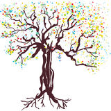 Tree at spring hand drawn Stock Photos