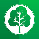 Tree in spring or summer - flat paper icon or logo. Green paper tree - flat vector icon or logo Stock Photo