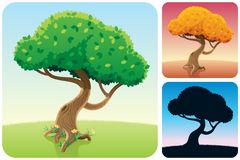 Tree Square Landscapes Royalty Free Stock Images