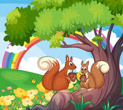 A tree with squirrels vector illustration