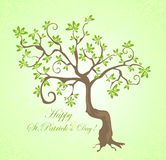 Tree for St. Patrick's Day Royalty Free Stock Photography