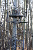 Tree stand. A tree stand sits empty in the forest Stock Image