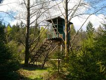 Tree stand near a wood. In nature park Bavarian Forest Royalty Free Stock Image