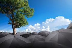 Tree standing alone from umbrellas nature conservation concept. Royalty Free Stock Photo