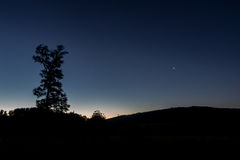 Tree and star after sunset. A lonely tree and star after sunset with blue sky Royalty Free Stock Image