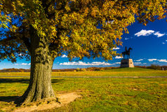 Tree and statue on a battlefield at Gettysburg, Pennsylvania. Royalty Free Stock Images