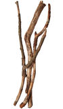 Tree sticks Royalty Free Stock Photography