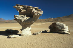 Tree of Stone. Natural stone sculpture ARBOL DE PIEDRA or tree of stone high in the Bolivian Altiplano Royalty Free Stock Photos