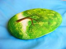 Tree stone Royalty Free Stock Photography