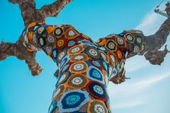 Tree with storm yarn. Sewn with coloured wool, street and creative art. With the blue sky in the background royalty free stock image
