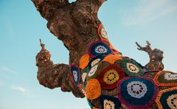 Tree with storm yarn. Sewn with coloured wool, street and creative art. With the blue sky in the background royalty free stock photos