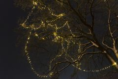 The tree on the street is decorated with yellow garland. At night stock images