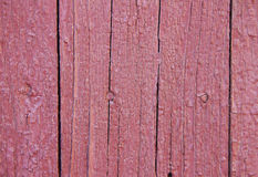 tree structure of old wooden doors and planks, painted and crack Royalty Free Stock Images