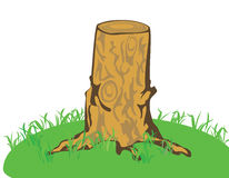 A tree stub Royalty Free Stock Image