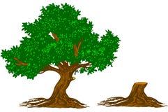 Tree and stump. Oak Tree and stump of tree royalty free illustration