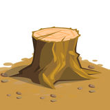 Tree stump. Cartoon big tree stump with roots Royalty Free Stock Image