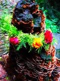 The tree, the stump, deadwood Royalty Free Stock Photo