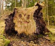 Tree stump Royalty Free Stock Images