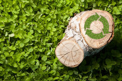 Tree stump on the grass with recycle symbol, top Royalty Free Stock Photography