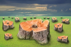 Tree stump on green field Stock Images
