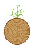 Tree stump and green plant shoot, vector Stock Photography