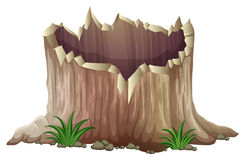 A tree stump Royalty Free Stock Photo