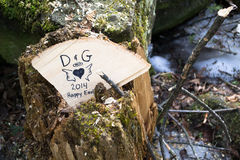 Tree Stump With Initials And Heart Sentiments Royalty Free Stock Photos