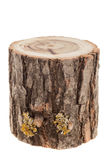 Tree stump, isolated on white Stock Photos