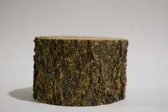 Tree stump, isolated on white, Wooden stump isolated on the white background stock images