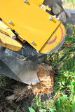 Tree stump machine. Royalty Free Stock Photography